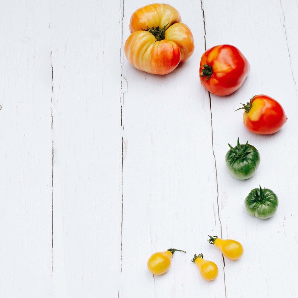 tomates mint blog
